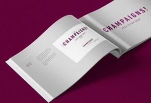 Champaigns, prima agenție de marketing din România dedicată magazinelor online de fashion și lifestyle