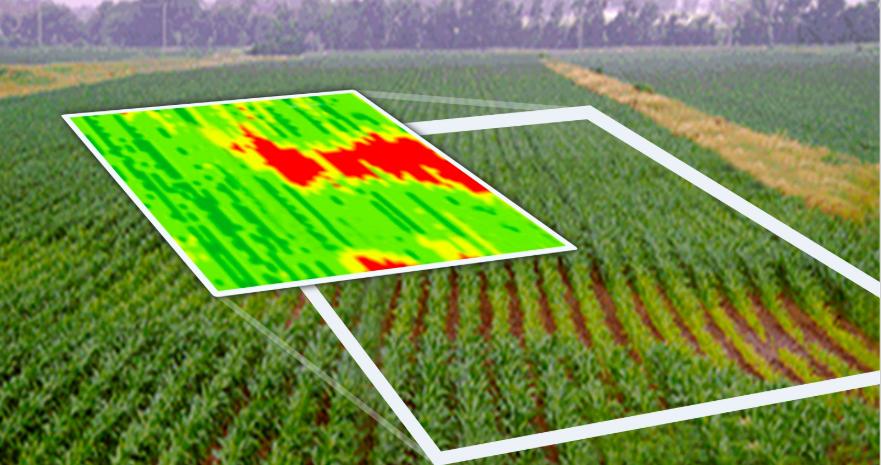 Soluții cloud-to-cloud în agricultură: Climate FieldView pune datele științifice la dispoziția fermierilor