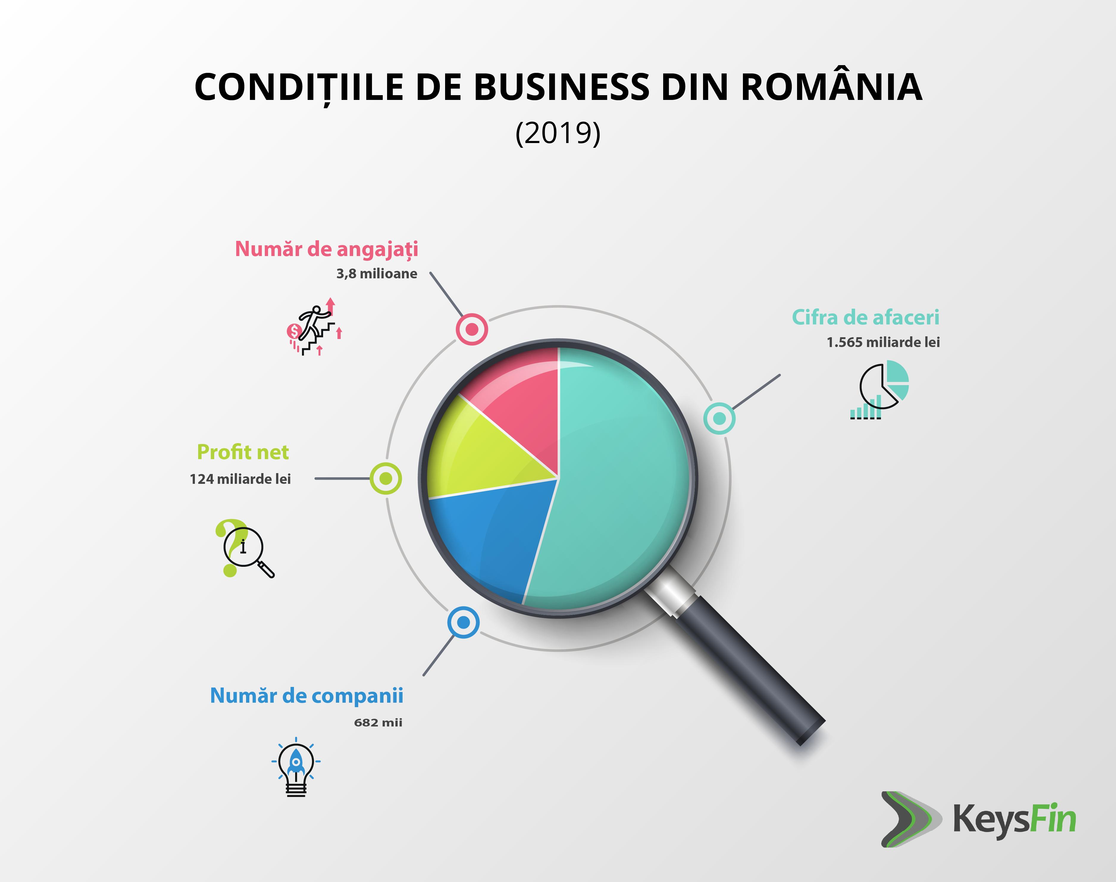 Top 700 companii locale au generat 45% din cifra de afaceri a tuturor companiilor nefinanciare din România