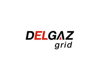 Delgaz Grid anunță o cofinanţare din fonduri europene pentru o investiţie de peste 45 de milioane de lei la Iaşi