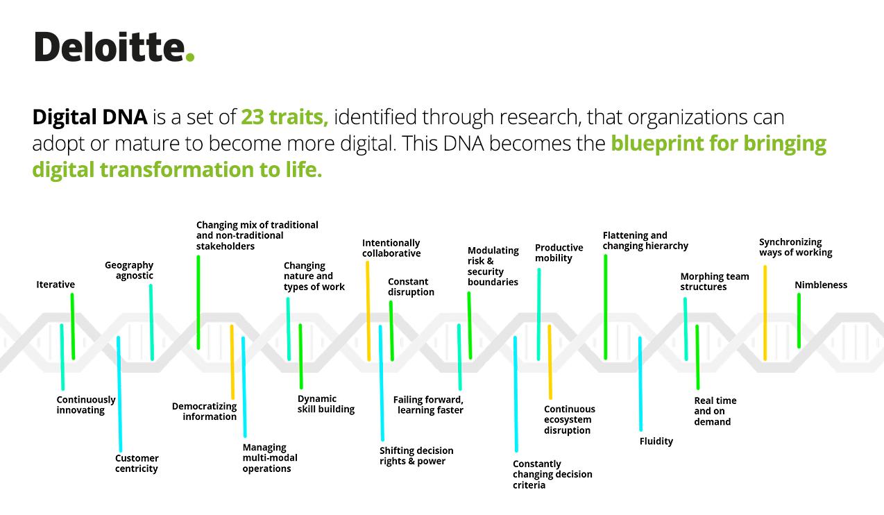Deloitte România lansează Digital DNA, o soluţie de evaluare a gradului de maturitate digitală a companiilor