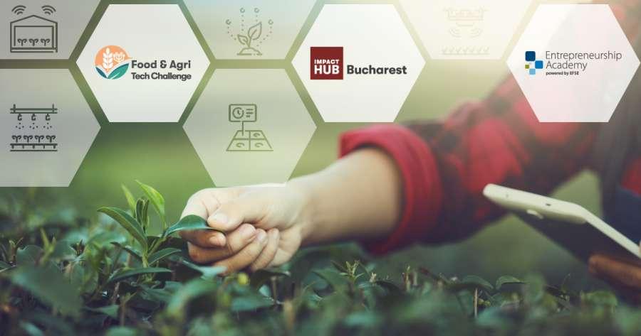 Impact Hub caută antreprenorii care vor revoluționa agricultura și industria alimentară prin tehnologie