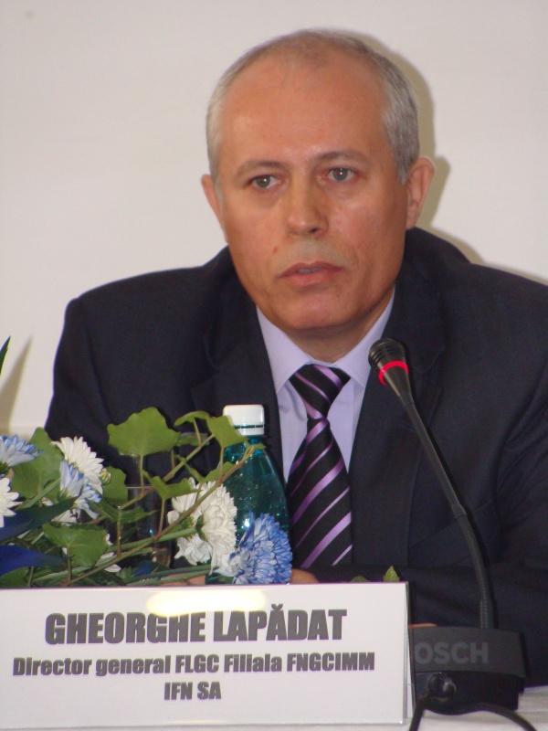 Gheorghe Lăpădat este noul director general al Fondului Naţional de Garantare a Creditelor pentru IMM