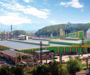 Kastamonu va investi 20 de milioane de euro în fabrica de prelucrare a lemnului de la Reghin