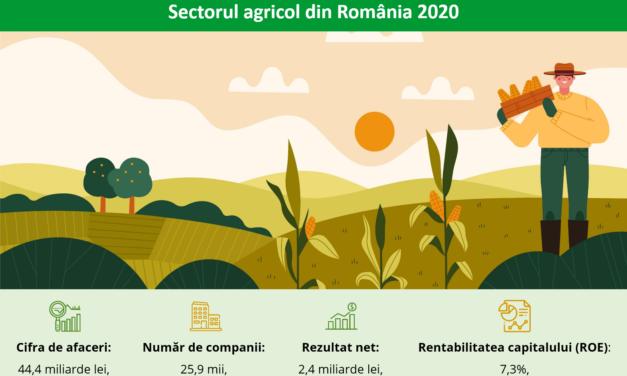 Sectorul agricol din România ar putea atinge nivelul record din 2019, de aproape 46 miliarde de lei