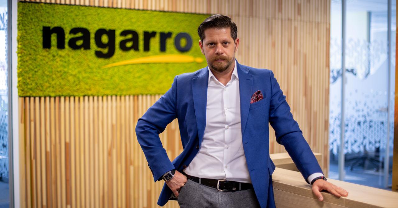 Companiile IT Nagarro Holding şi iQuest Group îşi anunță fuziunea pe piața românească
