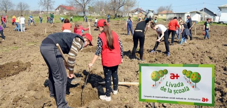 Angajaţi de la Antibiotice SA au plantat pomi fructiferi în trei şcoli din judeţul Iași
