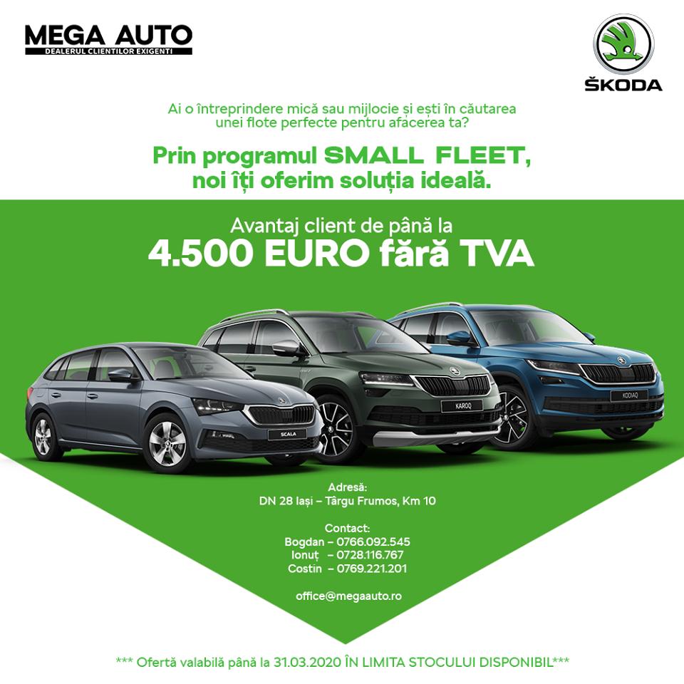 Oferta pentru IMM-uri: Programul de Small Fleet de la Mega Auto – Skoda Iași