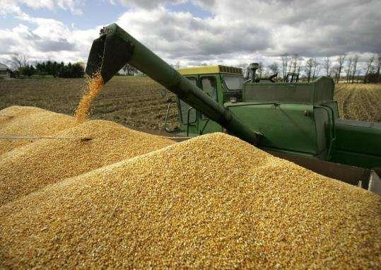 România interzice exporturile de cereale și sporește temerile mondiale privind aprovizionarea cu alimente