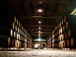 Comoara ascunsă din cramele româneşti: 75 de milioane de litri de vin de calitate nu pot fi comercializați din cauza clasării