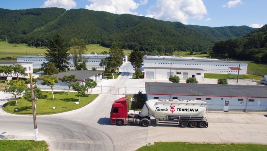 Transavia investeşte 20 milioane de euro în dezvoltarea capacităţii de producţie