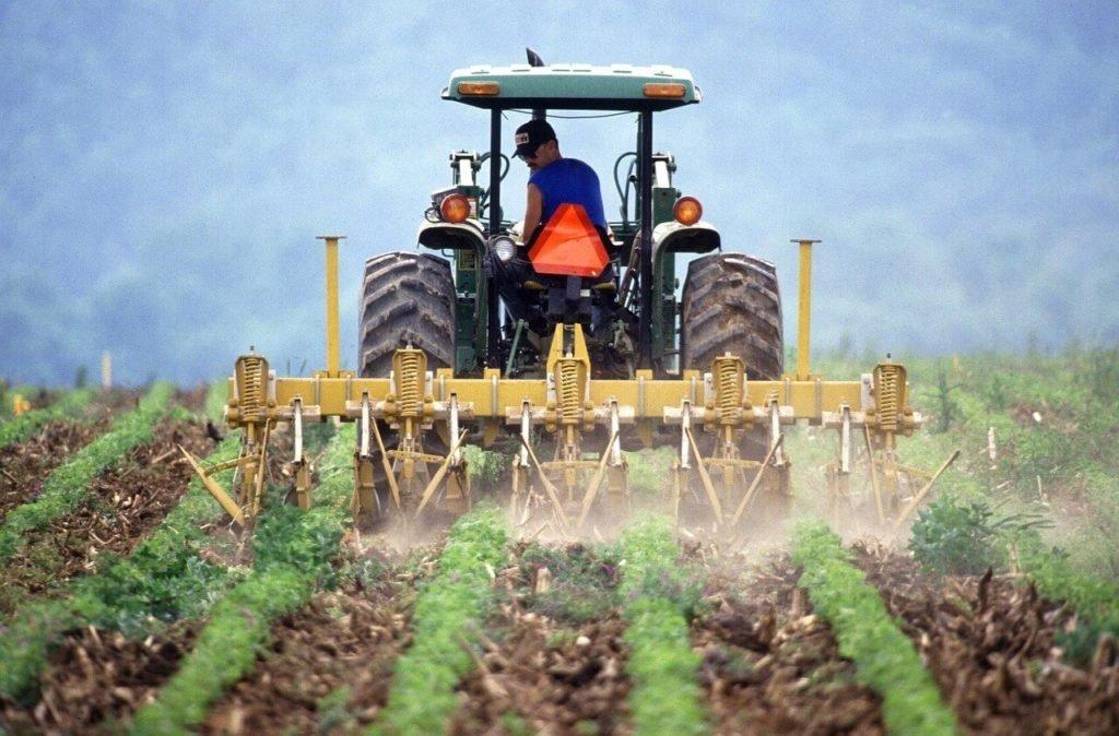 Italia caută soluții să readucă muncitorii sezonieri din România