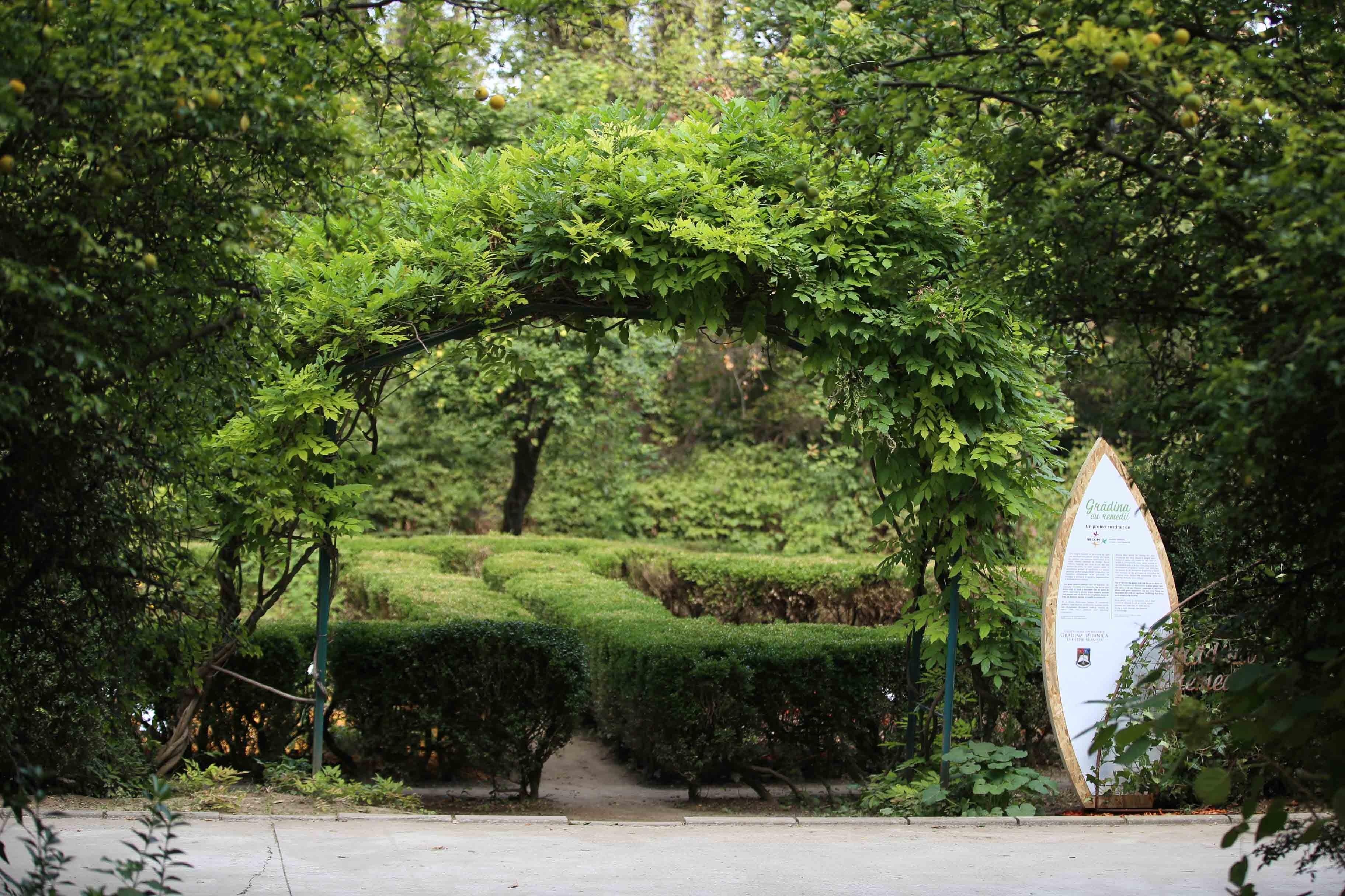 Secom a finalizat amenajarea sectorului de plante medicinale şi utile din Grădina Botanică din Bucureşti