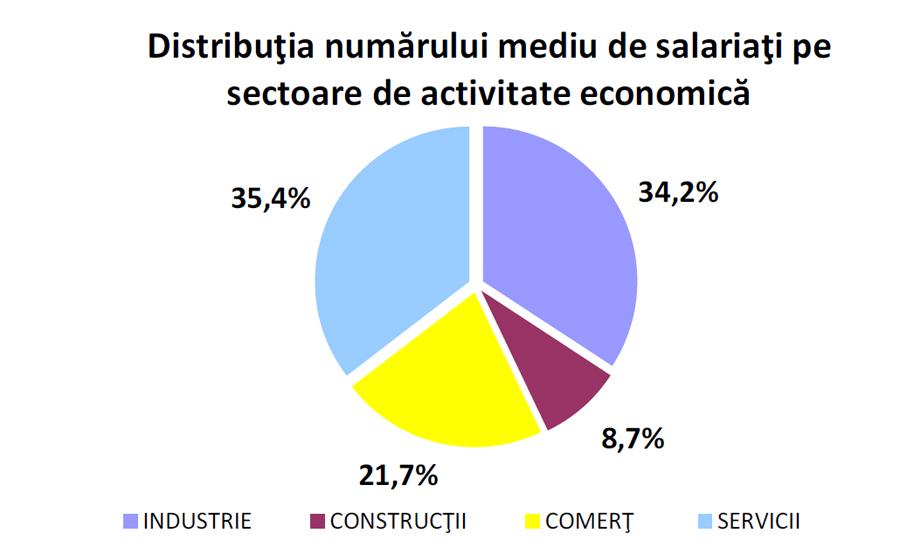 Sectorul serviciilor a atras cel mai mare număr de salariaţi, în 2017