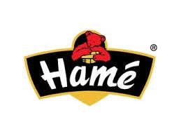Compania Orkla preia producătorul Hame în urma unei tranzacţii de 175 de milioane de euro