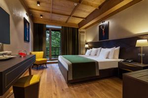 Piața hotelieră ar putea începe revenirea în a doua jumătate din 2021, susținută de un avans al turismului internațional