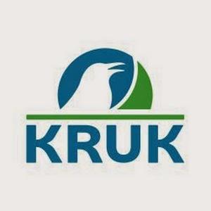 Kruk face afaceri bune în România: a cumpărat anul trecut creanţe de 3,1 miliarde euro cu 88 milioane euro