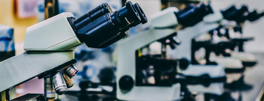 La Târgu Mureş ar putea lua ființă primul Parc Ştiinţific şi Tehnologic în domeniul medical din România