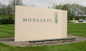 Compania Monsanto anunță un nou val de concedieri