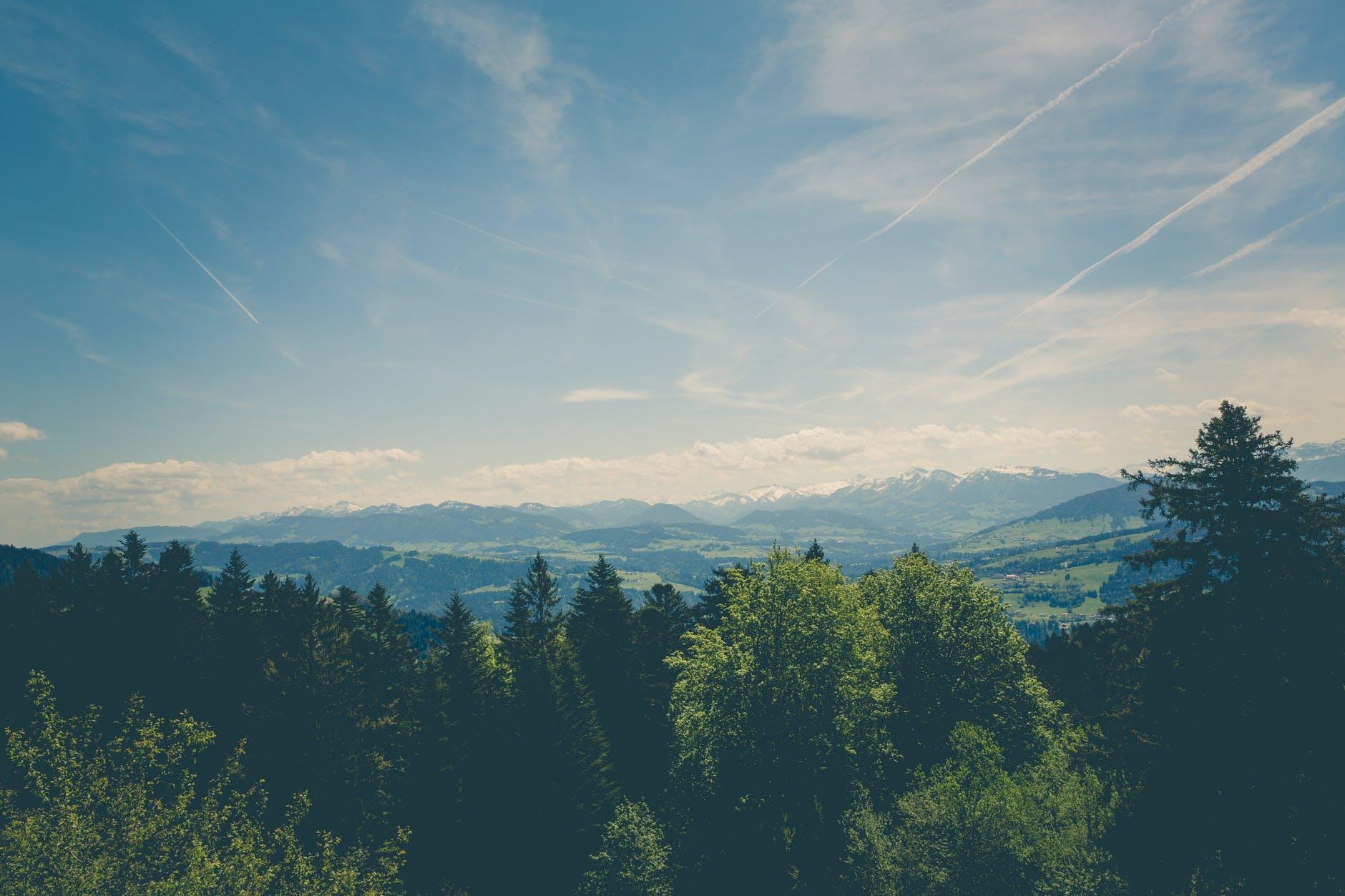 Activiştii de mediu acuză susţinerea investiţiilor în combustibili fosili şi lipsa de abordare a crizei climatice şi a declinului biodiversităţii