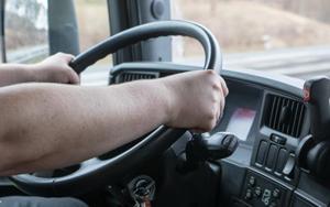 Şoferul, cea mai căutată ocupaţie a momentului în România