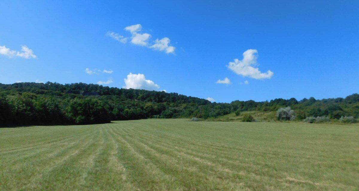 Piața de terenuri continuă să înregistreze interes crescut