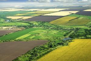 Tudorel Andrei (INS): Estimăm la Recensământul General Agricol 3,2 milioane de exploataţii agricole