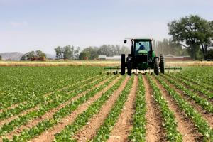 Adrian Negrescu (Frames): Agricultura şi IT-ul sunt principalele segmente care pot atrage noile tehnologii în România