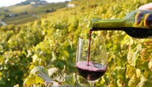 vie vin